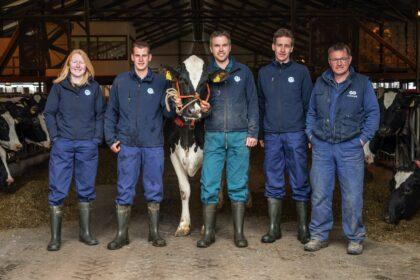 Medewerkers melkveebedrijf